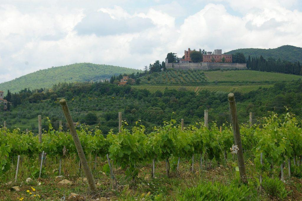 villas, wineries, grapes