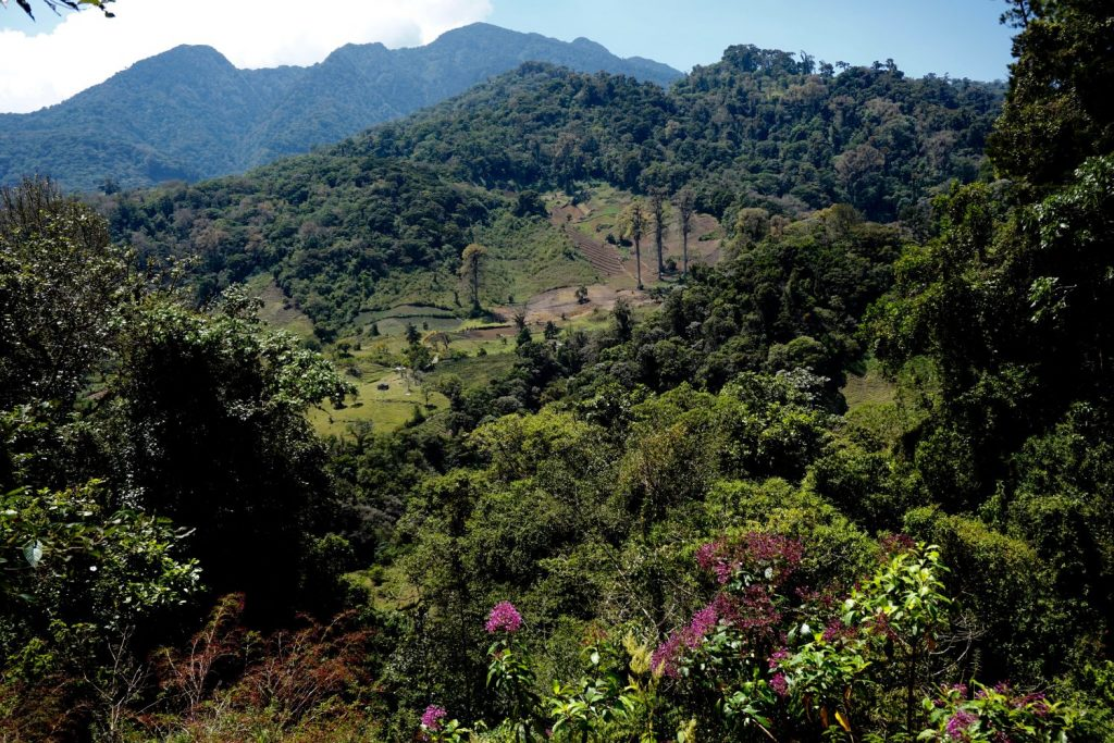 the valley vista