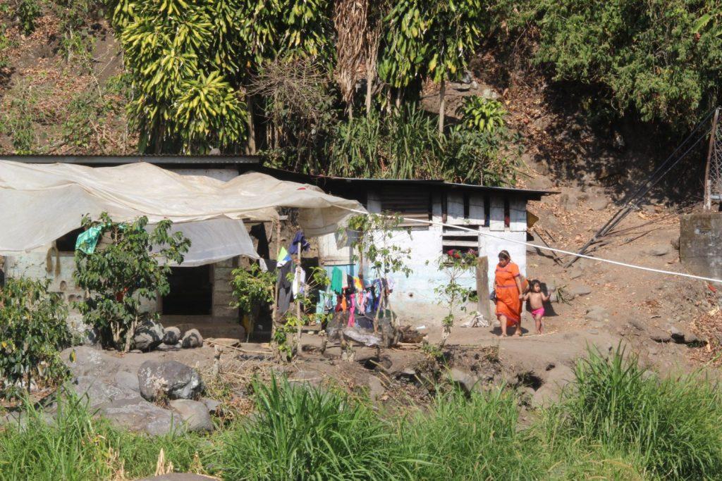 Ngabe-Bugle farm
