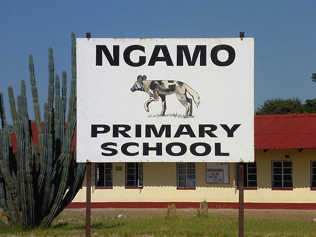 Ngamo school