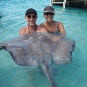 playing with a stingray