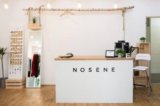 Image result for nosene
