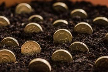 planting-money