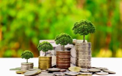 business-sustainability