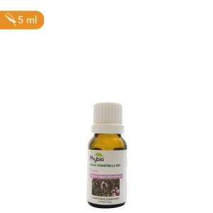 Thym, huile essentielle