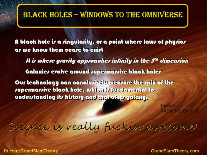 Windows to the Omniverse