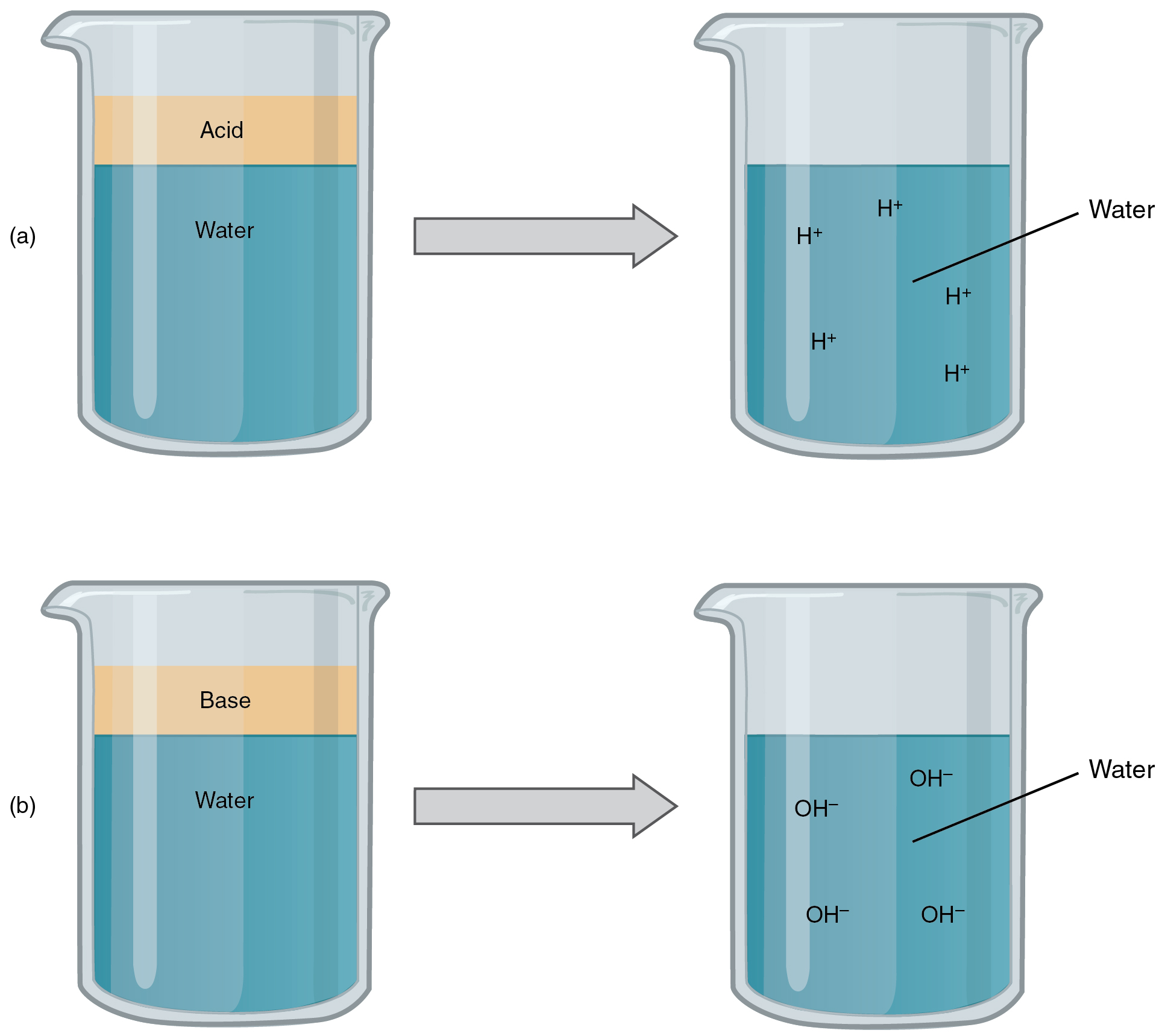 This Figure Shows Four Beakers Containing Different Liquids