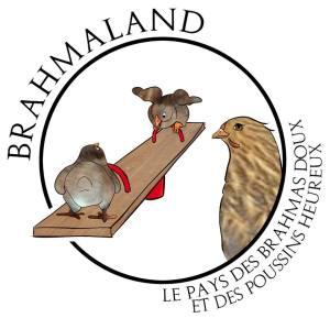 logo brahmaland