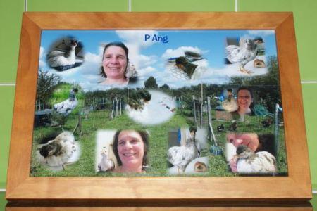 Tableau de montage photos de P'Ang Création de Amandine