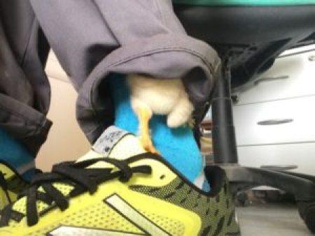 poussin qui grimpe sur la chaussette pour se blottir au chaud