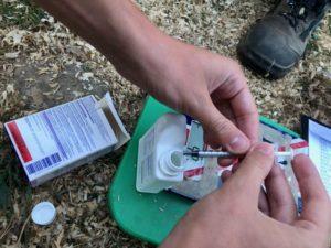 Administration par voie orale d'un dosage précis de vermifuge pour chaque poussin