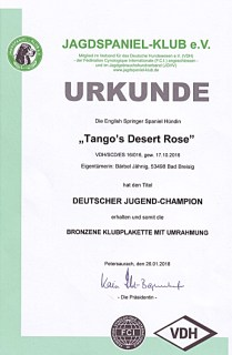 Jagdspaniel-Klub-e.V