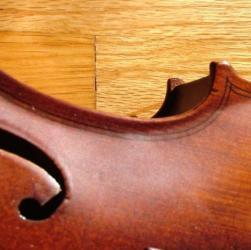 Violin from Morguefile.com