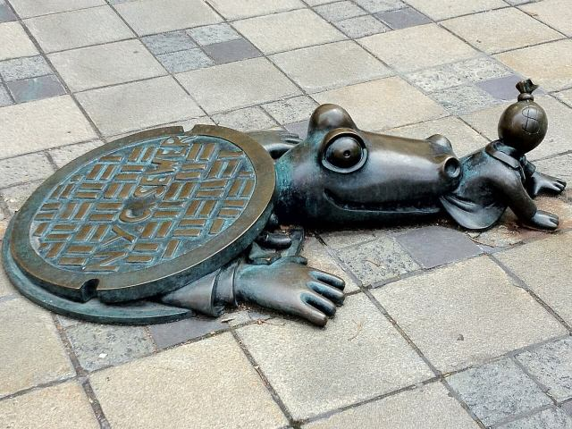 Alligator from the sewers