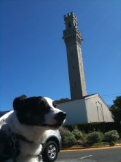 Hank is so pissed he can't even look at the Pilgrim Monument.