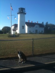 The Coast Guard only lets folks in on Wednesday. Pups probably not allowed.