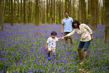 Bappa , Hanuman and Laxmi visit the Bluebell woods !