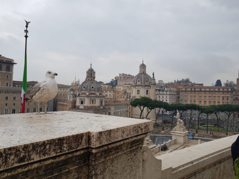 Mic ghid de calatorie – ce sa faci intr-o vacanta in Roma, ce sa nu ratezi, atractii turistice