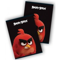 caiet matematica angry birds