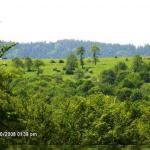 VAND LOT 91667 mp Intravilan, varf de deal, zona Rucar-Bran