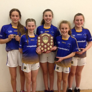 Tipperary GAA Scene 18th June