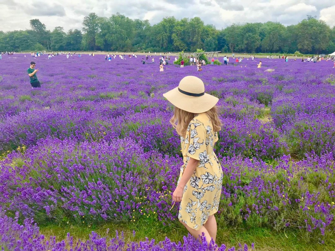 Girl in yellow dress at Lavender Fields