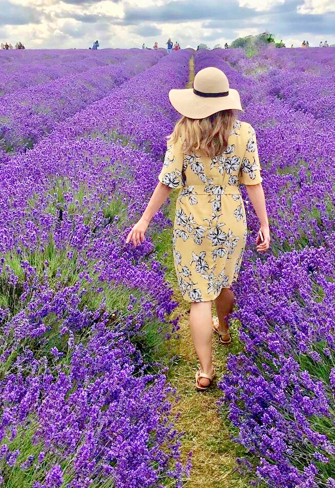Walking through the lavender fields