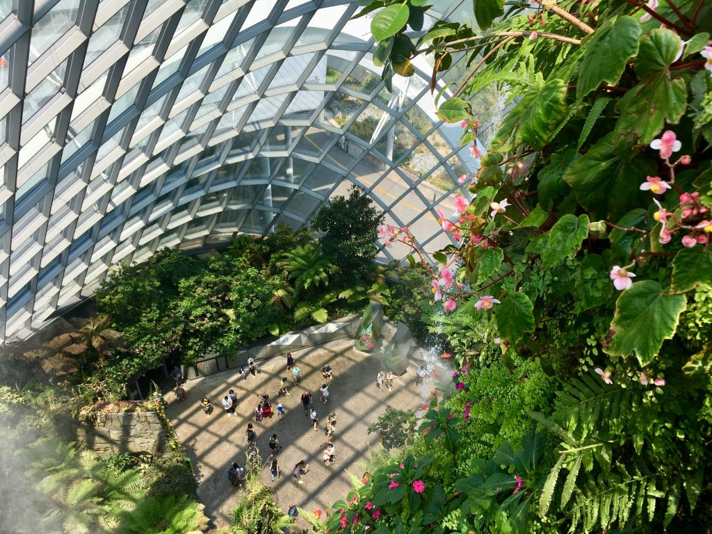 View from on top of mountain in Cloud Forest Dome, Gardens by the Bay, Singapore