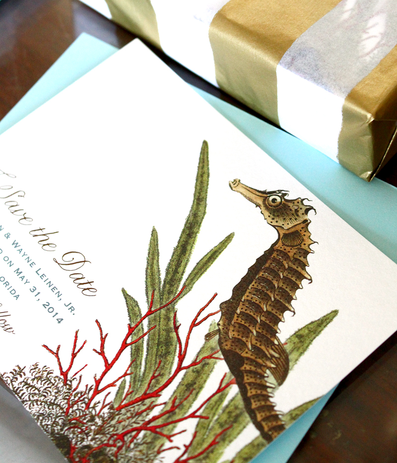 Seahorse Save the Dates.