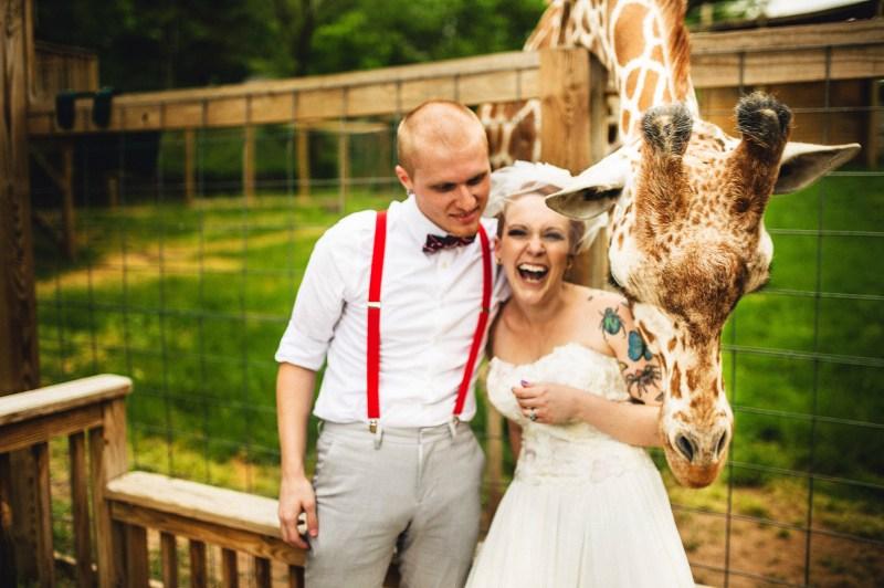 Giraffe Photo Bombs Wedding