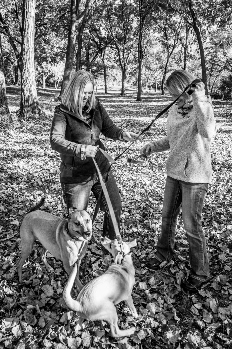 Two ladies, their pups, & a fall foliage meets football-themed engagement