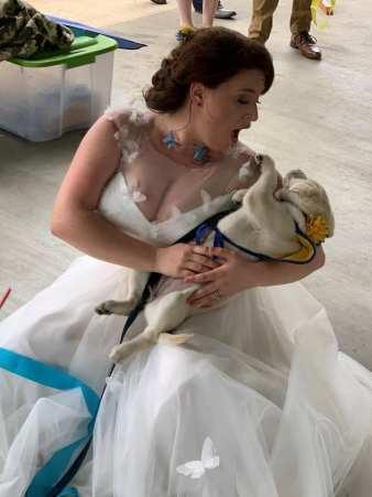 butterfly wedding dress by mila bridal as seen on offbeat bride