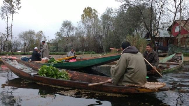 Shikara ride on Dal Lake, Kashmir: Jammu & Kashmir Tourism, Srinagar