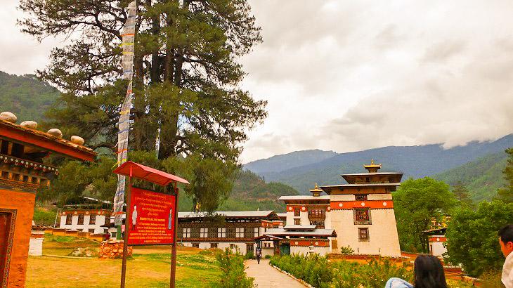 Pangri Zampa Monastery: North of Thimphu, Places to visit in Thimphu, Thimphu Monasteries, Best Bhutan Monasteries, Things to do in Bhutan. Tango Monastry, Tango Goemba, Cheri Goemba, Cheri Monastry