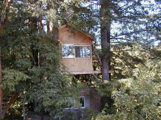 Corbin -- of the zipline wedding from Offbeat Bride -- built and lived in two treehouses -- take a break to stroll through them.