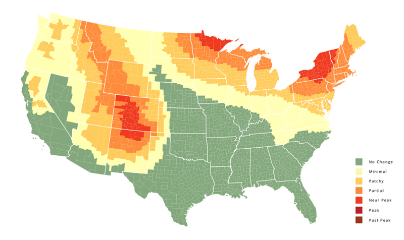 This fall foliage map will tell you when fall will be in full swing in your area