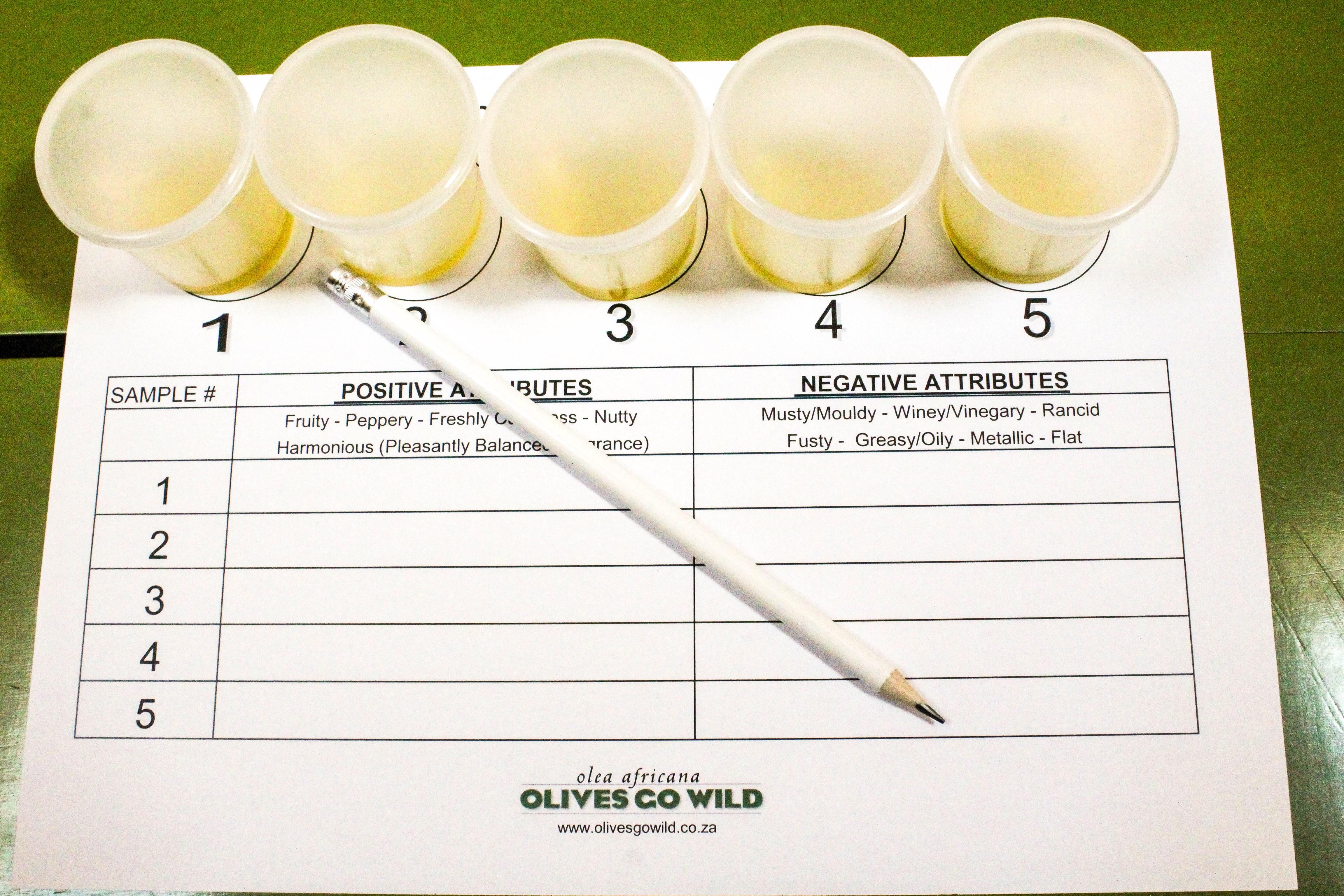 Babylonstoren Olive Workshop Off Beet Blog