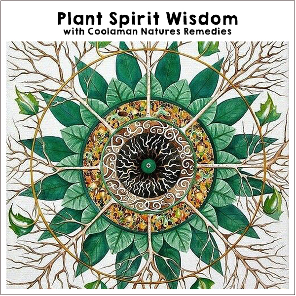 Plant Spirit Wisdom. Off-Grid Living Festival. Events Victoria