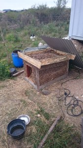 Benny the dog's well-insulated house.