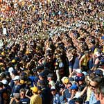 large crowds