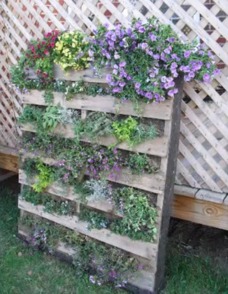 pallet planter vertical garden Upcycle Old Pallets to Make Beautiful Vertical Gardens