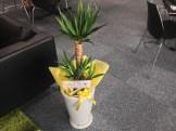 名古屋のWordPressでお馴染み、株式会社ベクトルの石川さんからお花を贈っていただきました。ありがとうございます!