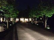 大宮西口の三橋の森の中にある「カフェボスケ(Cafe Bosquet)」さんに行きました。