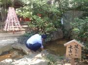 みん経キャンプ