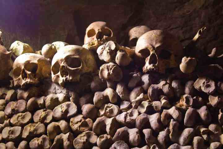 Catacombes of Paris - Skeletons