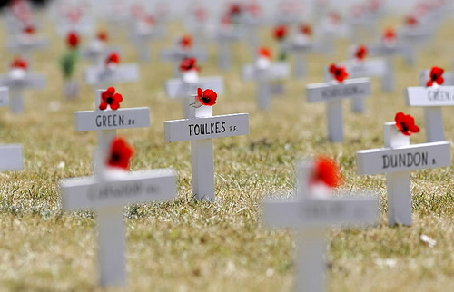 Poppies on soldiers' graves in Flanders Fields