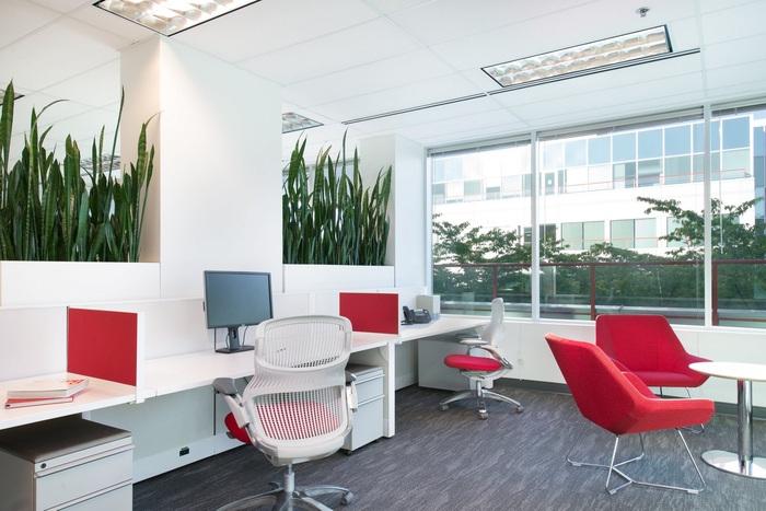 clio-expansion-office-design-4
