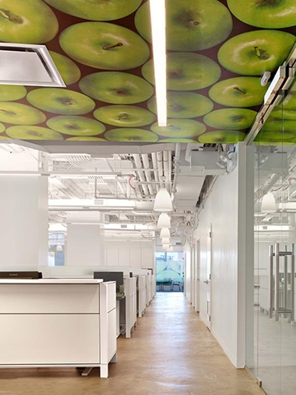 educators-for-excellence-office-design-3