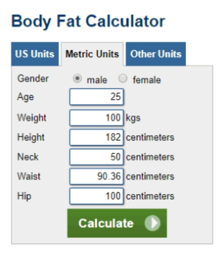 Free Body Fat Calculator Template