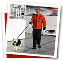 cunard dog walkers